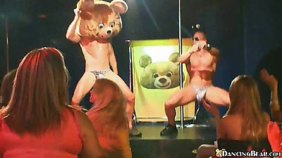 Dancing bear is at an all girls strip club